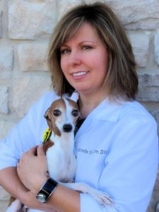 Our Team – New Haven Veterinary Clinic