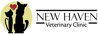 New Haven Veterinary Clinic